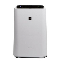 Air purifier KC-D60